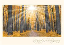 #3163<br>Thanksgiving Rays of SunlightThanksgiving Greeting Card