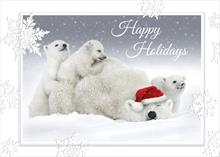 #6035<br>Mama Can&#39;t Get Much Rest!Polar Bear Holiday Card