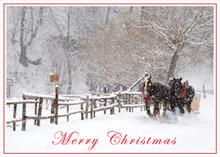 #6666<br>Winter Sleigh RideWinter Christmas Card