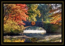 #6608<br>Autumnal SerenityBusiness Thanksgiving Card