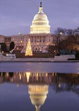 #4432<br>Capitol Christmas Tree